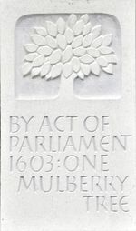 Mulberry Tree plaque